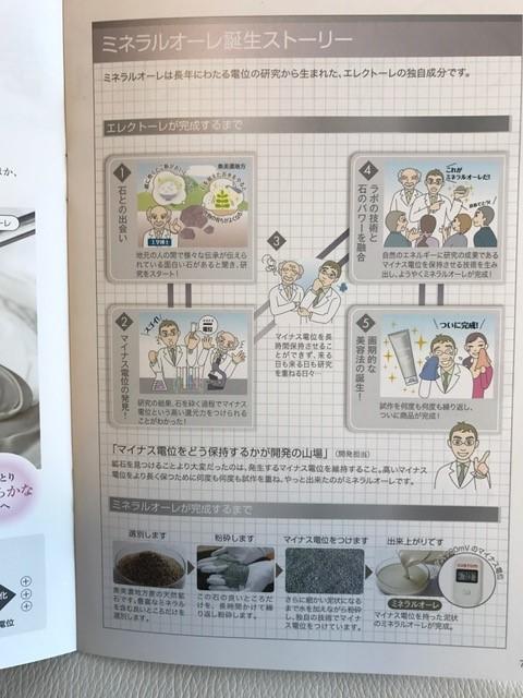 エレクトーレフェイストリートメント読本2